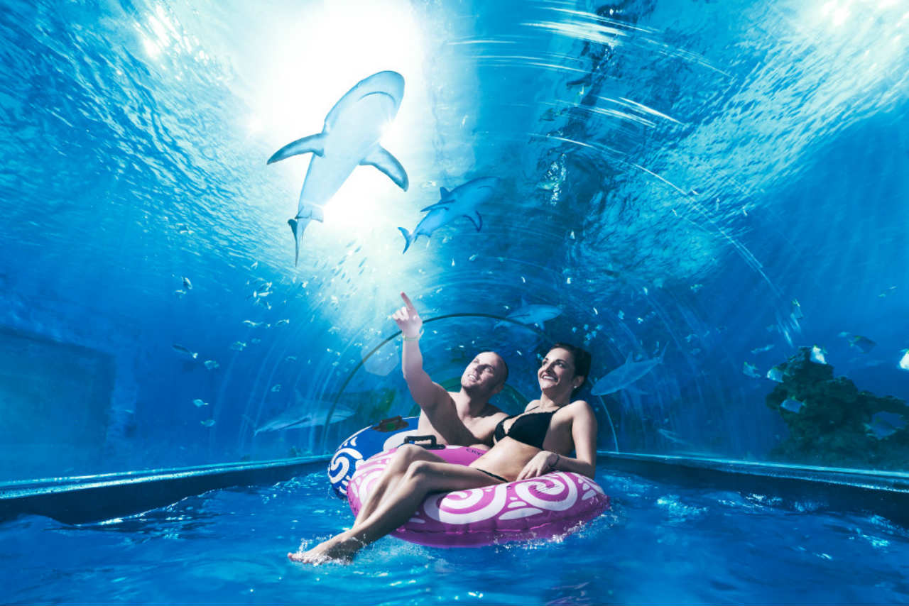 Aquapark Reda Rekiny w Shark Slide